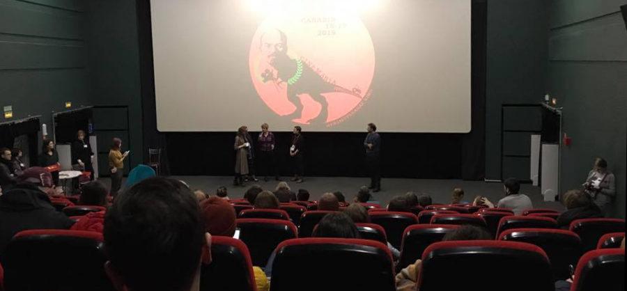 film festival programmes